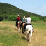 Der er masser af steder at ride hen på Wildcatter Ranchs seks millioner kvadratmeter, et areal godt og vel på størrelse med Mandø.
