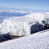 Vulkanen Kilimanjaro troner over den afrikanske savanne.