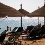 Prisen for leje af to solstole og en parasol for en dag i Egypten kommer ind på en 3. plads. Se priserne herunder.