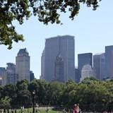 I Parker som Central Park i New York bliver det forbudt at ryge.