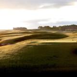 Links Course ved PGA of Sweden National har mange af karaktererne fra rigtige linksbaner såsom bulende fairways, masser af bunkers og store greens, men ligger ikke ned til kysten og er derfor ikke ægte links.