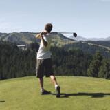 Den klassiske - Chamonix, 18 huller, par 72. Anlagt i 1934, udvidet i 1982.