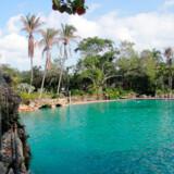Bondi Baths, som har eksisteret siden 1929, er i OL-størrelse (25 x 50 meter) og ligger lige op og ned af den verdensberømte Bondi Beach, Sydney, Australien.