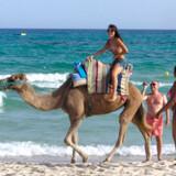 Man får mest for pengene i Tunesien. Det nordafrikanske land er billigst på næsten alle områder. Download 133 rejsebøger på Rejseliv.dk - gratis!