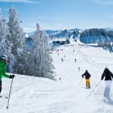 Der er 120 blå og 120 røde pister i Skiwelt Wilder Kaiser.