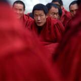 Tibatanske munke i byen Lhasa, 30. marts 2009.