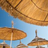Tunesiske dumper prisen på hotelværelser.