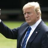 Donald Trump har fat i den lange ende, skriver Søren Hviid Pedersen, som mener, vi skal hylde præsidentens lidenskabelige forhold til politik.