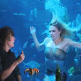 På Silverton Casino Lodge i Las Vegas i USA har man ansat to havfruer. Se video af en af havfruerne på arbejde nedenfor.