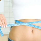 Dårlig samvittighed af marcipan og andesovs får som bekendt mange til at gå på slankekur i januar.
