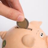 Eksperter i økonomi giver råd til tre forskellige investor-typer om, hvordan sparegrisen bedst fyldes op.