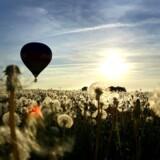 Arkivfoto. Var det noget med en tur i luftballon? Oplevelser vil i stor udstrækning ligge under dette års juletræ.