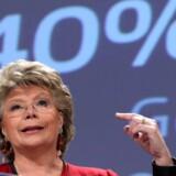 Det kan ikke være så svært at finde kvinder til bestyrelser i europæiske virksomheder, mener kommisær Viviane Reding, der nu har hjulpet virksomhederne på vej.