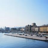 Målet er at åbne to nye hunde-strande i Rijeka i løbet af de næste år.