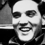 Kongen af Rock n' Roll har været død i mange år, men rejste ikke desto mindre fra Amsterdam forrige år. To hackere checkede uden problemer ind som Elvis Presley.