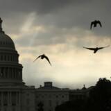 ARKIVFOTO. Det Hvide Hus i Washington.