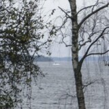 En forlist russisk ubåd ud for den svenske kyst sank med stor sandsynlighed efter kollision med svensk fartøj under Første Verdenskrig. Svenskerne er på stikkerne, hvad angår ubåde, da landet sidste år blev krænket af en russisk en af slagsen (billedet).