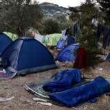 Folketingets udvalg, Integrationsudvalget og Europaudvalget, besøgte denne uge flygtningelejre i Grækenland. I flygtningelejren Samos er der mangel på plads, så mange beboere må sove i små telte udenfor lejren. Radikales Sofie Carsten Nielsen og Konservatives Rasmus Jarlov er enige: Forholdene er kummerlige. Arkivfoto.