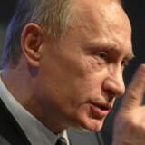 Ifølge ledende efterretningsfolk var Vladimir Putin personligt med til at beslutte, hvordan informationer, som hackere havde sikret fra Det Demokratiske Partis computere, blev lækket og på anden måde brugt (arkivfoto). Free/Sebastian Derungs