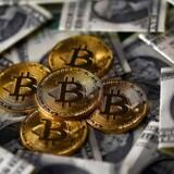 Den længe ventede opsplitning af verdens største virtuelle valuta er afblæst, efter folkene bag 2X-opdateringen har trukket sig fra kampen.