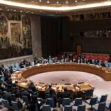 FNs sikkerhedråd dokumenterede i 2016 syriske grusomheder. 105 lande vedtog at oprette et FN-hold, der skulle indsamle og analysere beviser fra krigen i Syrien. Foto: Drew Angerer
