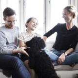 Familien Münster i deres hjem i Hellebæk. Sofie, Peter, deres datter, Filippa, og hunden Fuller.