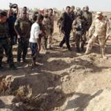 »Gravene indeholder op til 400 dræbte,« siger embedsmanden.