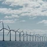 Arkivfoto. En af Vestas' store kunder i Nordamerika, Vancouver-baserede Alterra Power, har købt et stort udviklingsprojekt, Boswell Springs, der rummer mulighed for opførelse af en vindenergikapacitet på 320 megawatt i den amerikanske stat Wyoming.