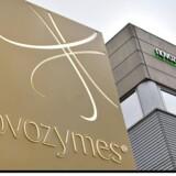 Novozymes udvider i Indien. Det danske enzymselskab vil bygge en ny produktion og forsyningskæde - og det kommer til at betyde investeringer for omkring 300 mio. kr.
