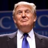 Donald Trump har ikke skræmt danskerne væk fra USA.