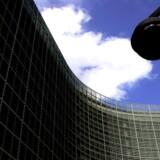 EU-Kommissionen, som står bag rekrutteringen, ønsker at modernisere processen ved de såkaldte »concours«, så der oftere kommer nyt og yngre blod ind i systemet.
