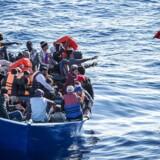»Hvis du spørger mig, hvad der er min største bekymring på nuværende tidspunkt, så er det lige præcis Spanien,« sagde lederen af EUs grænse- og kystvagtagentur for nyligt om stigningen i antallet af migranter og flygtninge, som tager mod Spanien.