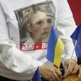 En oppositionstilhænger med støtte-tshirt for Julia Timosjenko og EU-flag leverer en stille protest i det ukrainske parlament.
