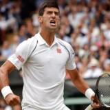 Novak Djokovic jubler, efter han har vundet Wimbledon.
