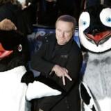 Den amerikanske skuespiller Robin Williams, der er kendt fra et utal af film som 'Døde Poeters Klub', 'Good Will Hunting', 'Good Morning, Vietnam' og 'Mrs. Doubtfire', er død. Det skriver nyhedsbureauet Reuters. Her bringer vi et udsnit af billeder fra hans liv og karriere: Robin Williams kaster håndtegn sammen med pingviner til den europæiske premiere på 'Happy Feet' i London.