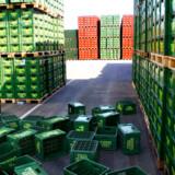 Carlsberg meddelte allerede tilbage i sensommeren 2008, at det primære mål var at nedbringe den 40 milliarder kroner store gæld, som bryggeriet havde pådraget sig med opkøbet af Scottish & Newcastle.