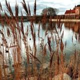 Aalholm Slot blev bragt tilbage til det gamle baronis storhed af Stig Husted-Andersen.