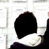 Det er ikke nemt at være arbejdsløs. Ifølge Borsen.dk har rekrutteringsbureauet JKS fuppet med falske opslag.