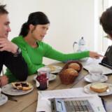 Hvor solide er de danske boligejere? Det spørgsmål vil økonomi- og erhvervsministeren have besvaret.