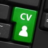 Hvad skal der stå i et CV og hvilken slags CV skal du bruge? Få styr på dit CV med denne guide. Arkivfoto: Scanpix Denmark