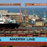 A.P. Møller – Mærsk bygger ikke kun skibe på eget værft i Lindø. Verdens største værft, Hyundai, bygger også skibe for det danske rederi. Her er det et tankskib, der er ved at blive gjort færdigt på det koreanske værft. Foto: Bloomberg.