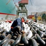 Lindø-værftets ordrebog fyldes yderligere op efter, at værftet i torsdags meddelte, at det har indgået kontrakt med rederigruppen Carras Hellas Group.