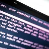 NATO mener, at en enkelt stat står bag hackerangrebet mod blandt andet Maersk.