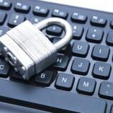 Mange af de statslige IT-systemer er udliciteret til eksterne leverandører, men det er stadig staten, der har ansvaret for, at IT-sikkerheden er i orden, fastslår Rigsrevisionen og Folketingets statsrevisorer. Arkivfoto: Iris/Scanpix