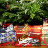 RB PLUS/PFS Arkivfoto:Gavekøb: Tjek vilkår på nettet grundigt. Det er nemt og bekvemt at købe julegaverne på nettet, men vær opmærksom på fortrydelsesret, bytteregler og leveringstid. Arkivfoto: Julegaver under juletræet, juleaften. (Foto: Brian Bergmann/Scanpix 2016)
