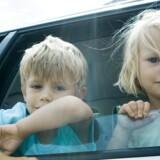 Børn skal lære at begrænse sig selv for at opdage andre. På den måde bliver de sociale individer, siger forfatter og foredragsholder Sofie Münster kendt fra tv-programmet Opdrag en vinder. Free/Sigrid Olsson/colourbox