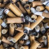 Pensionsselskaber holder fast i uetiske tobaksaktier (Foto: Søren Bidstrup/Scanpix 2016)