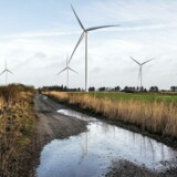Arkivfoto. Med den nuværende kurs når Danmark ikke målet om 50 procent vedvarende energi i 2030. S vil satse på landvind.