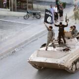 ARKIVFOTO fra 2014 af IS-soldater der kører i parade i Raqqa.