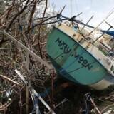 Det danske landshold i roning er uden vand og strøm, efter orkanen Irma har hærget i Florida, USA, hvor de er på træningslejr. Orkanen har gjort omfattende skade, og har skabt kaos i den amerikanske tropestat.